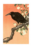 Crow Against Orange Sky Giclee Print by Koson Ohara