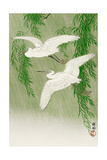 Two Egrets and Willow Tree Giclee Print by Koson Ohara
