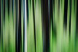 The Burn in Spring Photographic Print by Ursula Abresch
