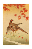 Pheasants Giclee Print by Koson Ohara