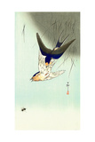 Swallows and Bee Giclee Print by Koson Ohara