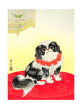 Pekingese Dog and Bush Warbler Giclee Print by Koson Ohara