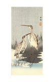 Two Snipes Giclee Print by Koson Ohara