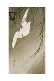 Egret in Storm Giclee Print by Koson Ohara