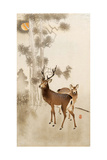 Two Deer, Pine and Moon Giclee Print by Koson Ohara