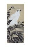 White Eagle and Monkey Giclée-Druck von Kyosai Kawanabe