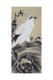 White Eagle and Monkey Giclee Print by Kyosai Kawanabe