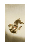 Fighting Monkeys Giclee Print by Koson Ohara
