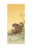 Two Monkeys and Butterflies Giclee Print by Koson Ohara