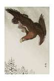 Eagle in Flight Against Snowy Sky Giclee Print by Koson Ohara