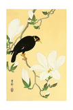 Indian Hill Minor and Magnolia Giclee Print by Koson Ohara