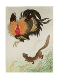 Rooster and Weasel Giclee Print by Koson Ohara