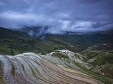 Longji Rice Terraces Photographic Print by Yan Zhang