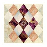 Dia 2 Giclee Print by Meiya Y