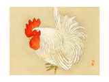 Bairei Gadan - Rooster Giclee Print by Bairei Kono