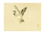 Bairei Gadan - Bird Giclee Print by Bairei Kono