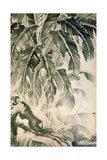 Palms Sumi on Paper Giclee Print by Jakuchu Ito