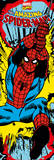 Marvel - Amazing Spiderman Kunstdrucke