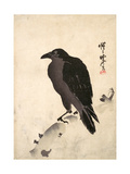 Crow Resting on Wood Trunk Giclee Print by Kyosai Kawanabe