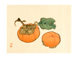 Two Persimmons Giclee Print by Bairei Kono