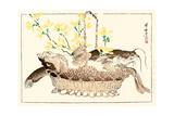 Kyosai Rakuga - Catfish Giclee Print by Kyosai Kawanabe