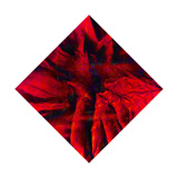 Red of Cranberry. The Volcanic Crimson Is also Red Giclee Print by Masaho Miyashima