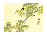Flowers and Birds Picture Album by Bairei No.4 Giclee Print by Bairei Kono