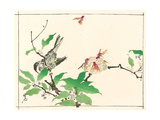 Bird and Hornets Giclee Print by Kyosai Kawanabe