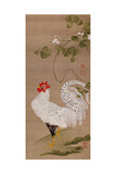 White Rooster Giclee Print by Jakuchu Ito
