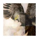 High Spirit Giclee Print by Meiya Y