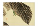 Katydid on Banana Leaf Giclee Print by Bairei Kono