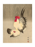 Rooster and Hen Giclee Print by Bairei Kono