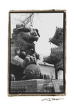 Imperial Lion, Beijing Prints