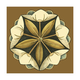 Small Floral Mandala on Caramel IV Giclée-Premiumdruck von Erica J. Vess
