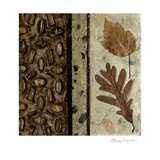 Earthen Textures VI Prints by Beverly Crawford