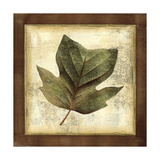 Rustic Leaves III - No Crackle Posters by  Vision Studio