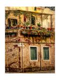 Italian Garden Giclee Print by Danny Head