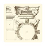 Small Corinthian Detail IV Poster von  Vision Studio