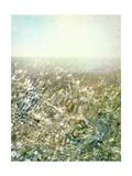 Ocean Dream I Art by Pam Ilosky