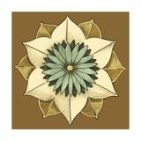 Small Floral Mandala on Caramel II Giclée-Premiumdruck von Erica J. Vess