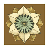 Small Floral Mandala on Caramel II Premium Giclee Print by Erica J. Vess