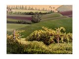 Chianti Hills Prints by Michael Swanson