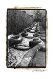 Italian Garden IV Premium Giclee Print by Laura Denardo