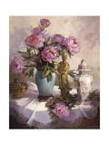 Peonías rosas Láminas por Maxine Johnston
