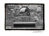 Garden Respite III Premium Giclee Print by Laura Denardo