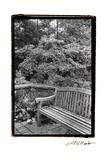 Garden Respite I Premium Giclee Print by Laura Denardo