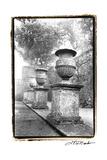 Italian Garden II Premium Giclee Print by Laura Denardo