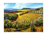 Chianti Vineyards Print by Michael Swanson