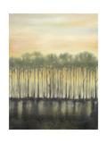 Dusk in Spring Posters por Jennifer Goldberger