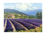 Michael Swanson - Fields of Lavender Umění
